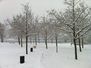 The Danube in the Snow